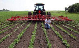 Alertan de contaminación de agua por industrias agrícolas