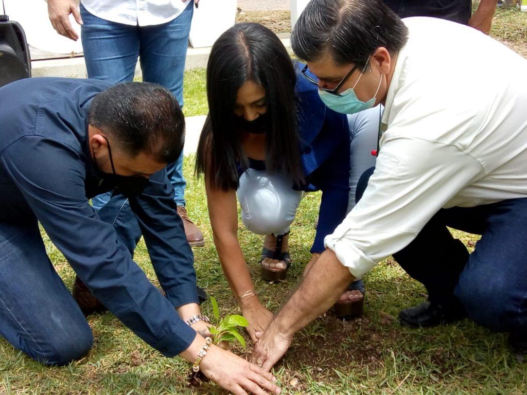 Sembrando Huella: Nuevo programa de reforestación del INAB